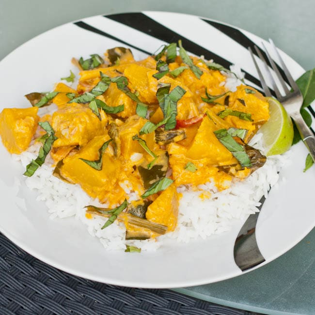 Red Curry Squash