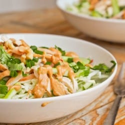 Thai Chicken Salad {Gluten-Free, Dairy-Free}