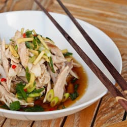 Shredded Chicken with Asian Ginger Sauce