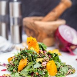 Vegan Acorn Squash Quinoa Salad with Cranberry and Pistachio
