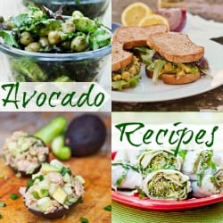 Avocado Recipes Collection