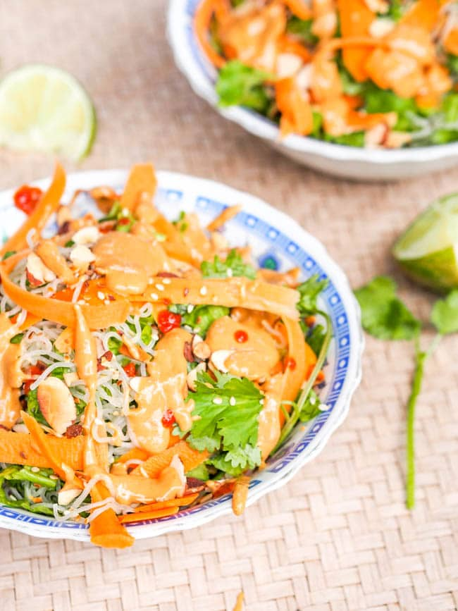 Vegan Asian Noodles with Carrots and Tahini Sauce make for the ultimate meatless gluten free dinner. Crunchy carrots, crisp lettuce, soft noodles all enveloped in a creamy sesame oil infused Asian tahini sauce.