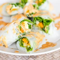 Vegan Summer Rolls with Mango and Avocado {GF}