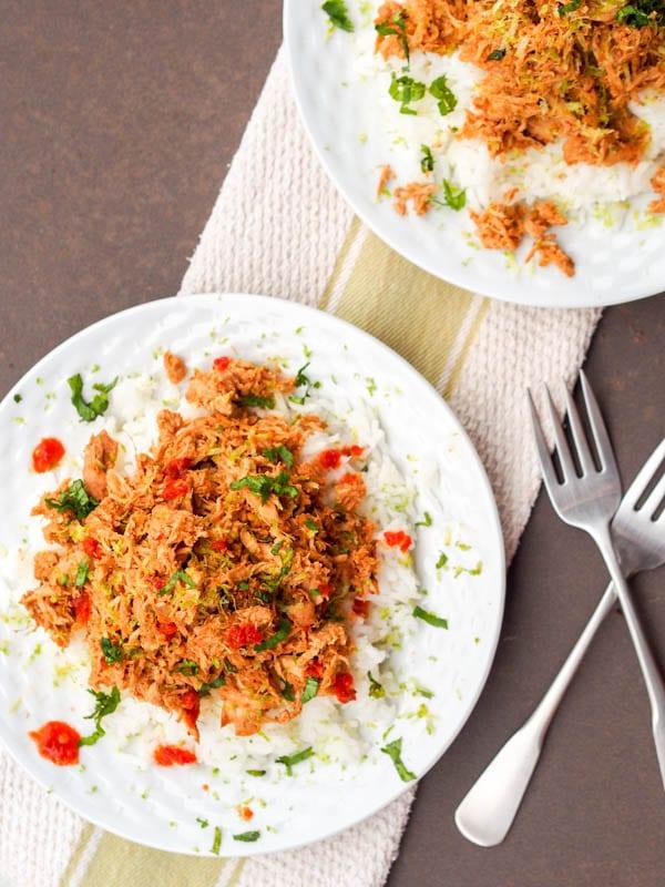 Slow Cooker Asian Chicken Recipe {Gluten-Free, Dairy-Free}