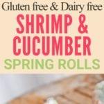 shrimp spring rolls pin