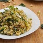 alfalfa salad