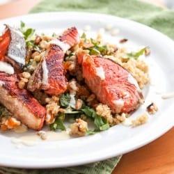 Salom over Quinoa Salad w Arugula, Almonds and Apricots