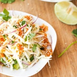 Vegan Asian Slaw with Cabbage Onion Cilantro {Gluten-Free}