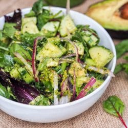 Avocado cucumber salad made with red onion, cilantro and arugula with the perfect zesty and spicy pesto based dressing. Perfect for a light meal. Gluten-Free and Vegan. Ready in mins.