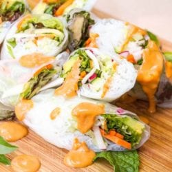 Vegan Spring Rolls Recipe with Peanut Sauce {Gluten-Free}
