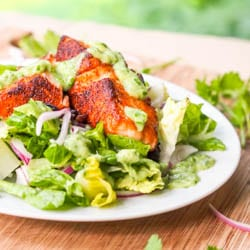 Seared Salmon Salad with Avocado Cilantro Dressing {GF, DF}