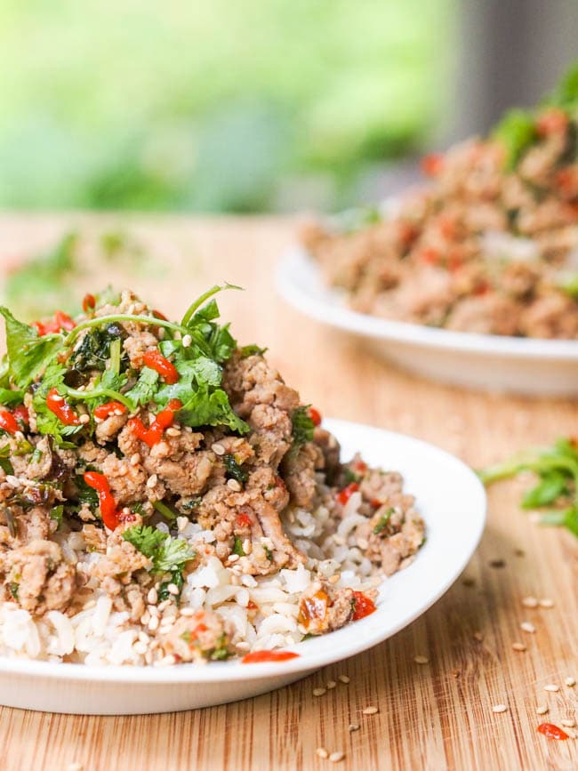 Ground Turkey Stir Fry with Asian Sauce and Fresh Herbs