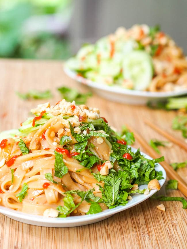 Asian Vegan Sesame Noodles Salad
