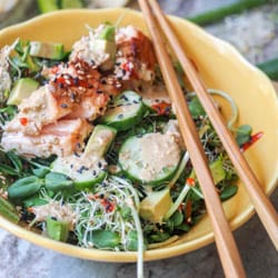 Asian Salmon Salad with Sesame Ginger Dressing makes for the perfect summer lunch. Made with cucumbers, greens, and avocados this is a nutritious healthy 15 minute meal. Gluten Free and Dairy Free. | avocadopesto.com