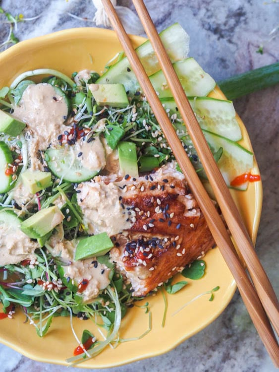 Asian Salmon Salad with Sesame Ginger Dressing, cucumbers, avocado and alfalfa sprouts