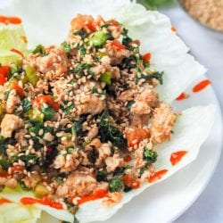 Have dinner on the table in 30 mins or less with these low carb high protein Asian chicken lettuce wraps which are brimming with vibrant flavors from the green onions, mint, cilantro and cucumbers. Bound to be your new favorite weeknight meal. Gluten-Free & Dairy Free.