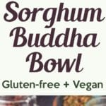 sorghum buddha bowl pin