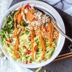 Asian Cabbage Salad with Chicken and Peanut Dressing {GF, DF}